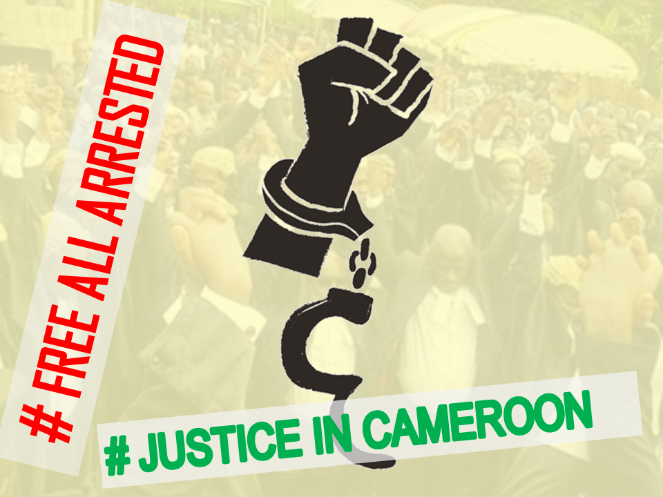 Cameroon Government Breaks the Law and Violates Basic Human Rights